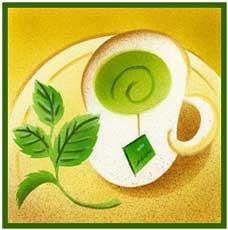 در فواید چای سبز