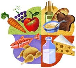 تغذیه سالم آموزش به زبان ساده